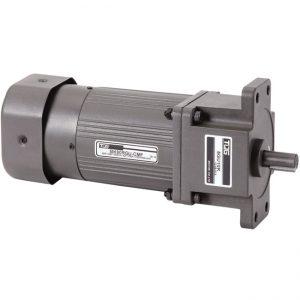 Motor de engranaje de freno Micro AC