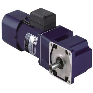 Micro AC induction gear motor