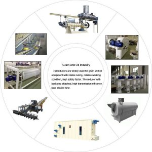 Speed reducer in Grain and oil seed processing industrial